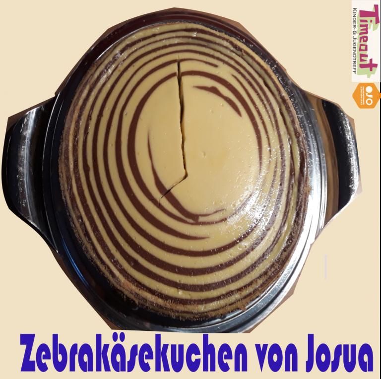 Zebra_Josua